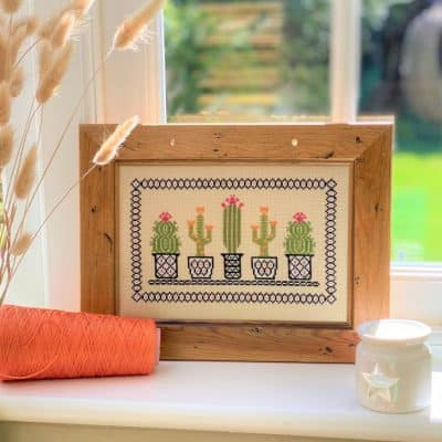 cactus counted cross stitch kit